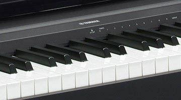 Yamaha P-45 Key